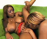 Black lesbians with big tits in passionate action